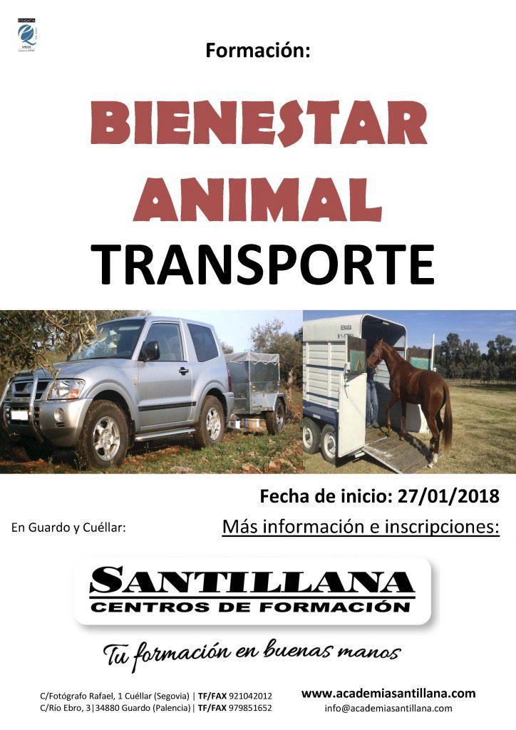 bienestar animal santillana formacion academia