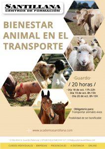 Curso Bienestar Animal en el Transporte @ Santillana Centros de Formación Guardo