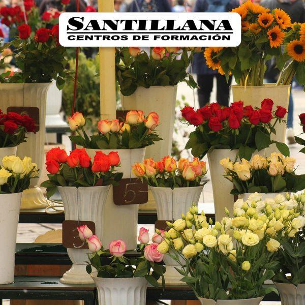 Curso online de Servicios y productos en floristería Santillana Formación